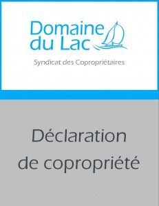 declaration-web